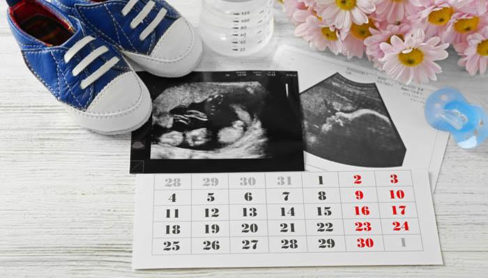 tüp bebekte hamilelik haftası nasıl hesaplanır