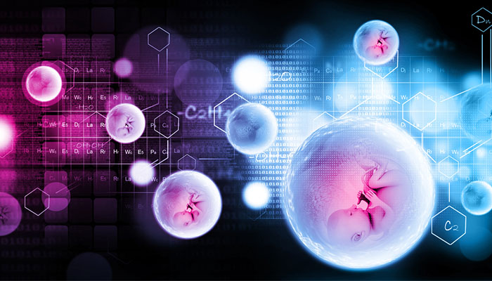 embriyo transferi nedir